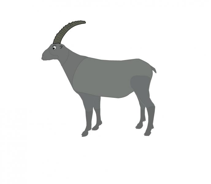 Project Flippen: Steenbok